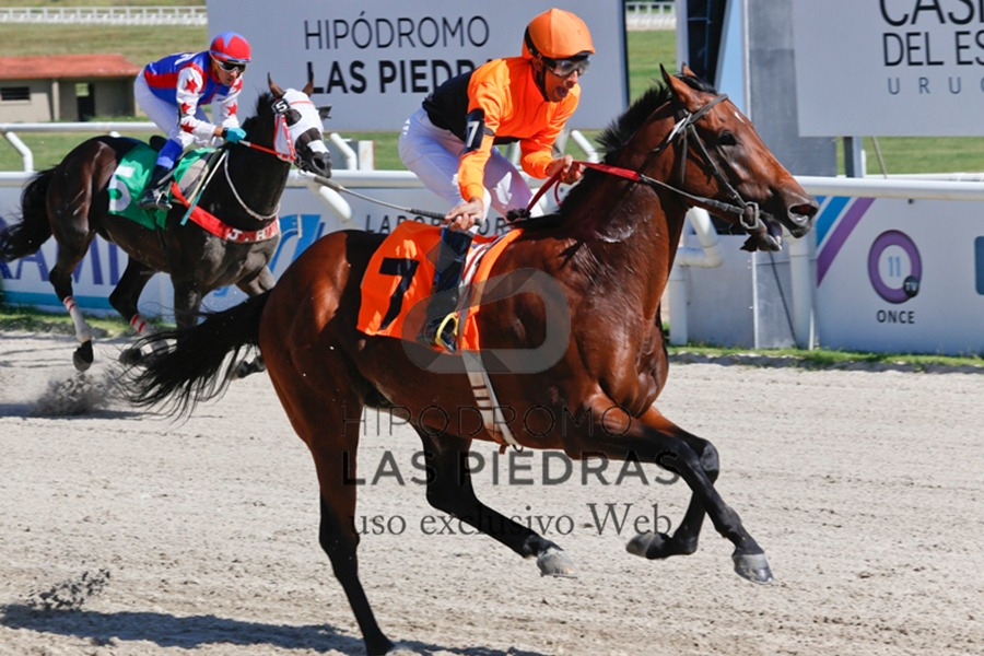Simple Black (Brooklyn Boy) gana Condicional (1200m-Arena-LPI).
