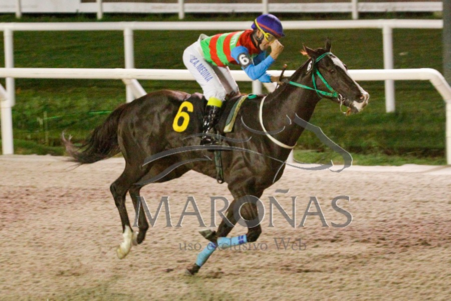 Peter Fund (Fund of Funds) se adjudica Condicional (1000m-Arena-MAR).